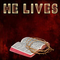 HE LIVES - Bible/Thorns Royalty Free Stock Photo