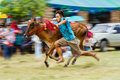 Livestock show prachuapkhirikhan thailand december tradition cow racing on fair of competition the animals on december in pranburi Royalty Free Stock Image