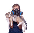 Living with pet allergies funny silly shot of a kid holding a cat wearing a gas mask Stock Photos