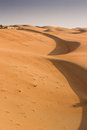 Liwa sands abu dhabi deser landscape united arab emirates Royalty Free Stock Photography