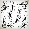 Lizard black silhouette, collection Royalty Free Stock Photography
