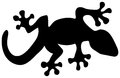 Lizard silhouette vector illustration of a black Stock Images