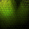 Lizard skin Royalty Free Stock Images