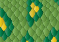 Lizard skin Royalty Free Stock Photography