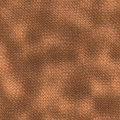 Lizard skin Stock Photos