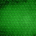 Lizard skin Stock Images