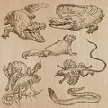 Lizards - An hand drawn vector pack