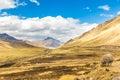 Llama, Alpaca Herding   Road C...
