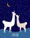 Llama Alpaca. Two cute llama Kiss at night under the starlit sky