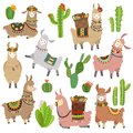 Llama cactus. Chile llamas alpaca and cacti wild lama. Peru camel, girl scrapbook kids funny elements cartoon vector set