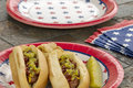 Loaded hotdogs at a holiday bbq and cookout picnic with grilled potato chips one image in series of patriotically themed images Stock Photos