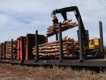 Loading Cut Trees on a Railcar Stock Photos