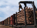 Loading Logs on a Railcar Royalty Free Stock Image