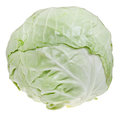Loaf of cabbage green isolated on white background Stock Photography