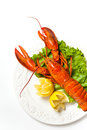 Lobster boiled on dish with lemon slices Stock Images
