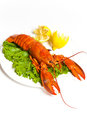 Lobster boiled on dish with lemon slices Royalty Free Stock Photography