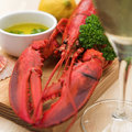 Lobster dinner with wine Royalty Free Stock Image