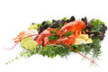 Lobster dish Stock Image