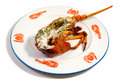 Lobster on the half shell Royalty Free Stock Photos
