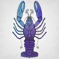 Lobster hand drawn illustration vector Royalty Free Stock Photos