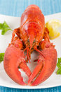 Lobster with lemon wedges Royalty Free Stock Photography