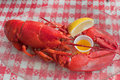 Lobster and Melted Butter Stock Images