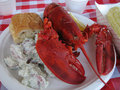 Lobster picnic Royalty Free Stock Photo