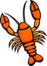 Lobster vector illustration Stock Images