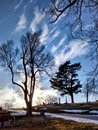 Local cemetery in atchison kansas trees oak hill Stock Photo