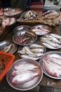 Local Fish, Hong Kong Market Royalty Free Stock Photo