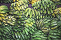 Local green bananas in the market of ponta delgada azores Stock Images