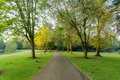 A local park with a pathway Royalty Free Stock Photo