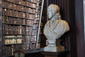 Locke bust in Trinity College Royalty Free Stock Photo