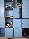 Lockers Royalty Free Stock Image