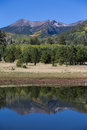 Lockett meadow reflection and near flagstaff arizona in autumn Royalty Free Stock Photos