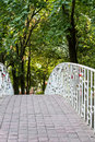 Locks of love fixed to the railings of bridge in park Royalty Free Stock Photo