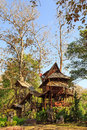 Lodging treehouse at mae chaem chiang mai province thailand Royalty Free Stock Photography