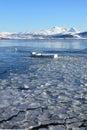 Lofoten's ice prison Royalty Free Stock Photo