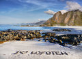 Lofoten, Travel Motif Royalty Free Stock Photo