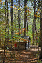 Log cabin in forest Stock Photo