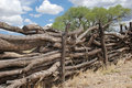 Log fence Royalty Free Stock Image