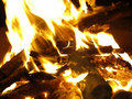 Log fire closeup of a burning camp for background Royalty Free Stock Photo