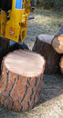 Log splitter Royalty Free Stock Photos