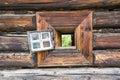 Through the log window