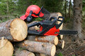 Logger equipment with cut trees Stock Photos