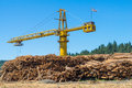 Logging Crane Royalty Free Stock Photo