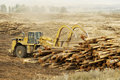 Logging Equipment 6 Stock Image