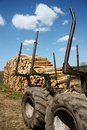 Logging or Timber Industry Resources Stock Photo