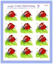 Logical puzzle game for little children. Need to find two identical ladybirds. Educational page for kids.