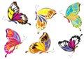 Logo Butterflies